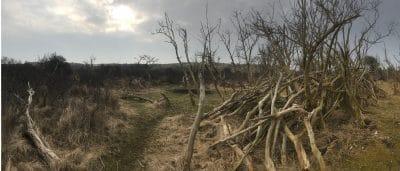 Zuidelijk Duingebied Noord-Holland duinen archeologie